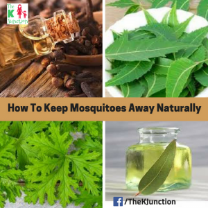 How To Keep Mosquitoes Away Naturally – Tips & Tricks