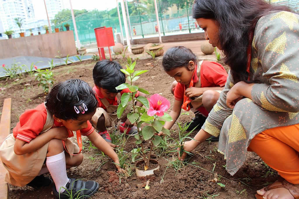BLiSS Edify International School, Hinjewadi, Pune – IB Board School